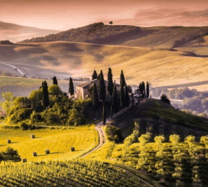 Tuscany Mindi Abair Wine and Music Tour