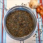 Tasting Good Naturally : Lentilles aux poireaux - Vegan