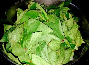 IMG_0981-300x220 Rice with Sorrel Leaves/Gongura Puliyodharai/Pullicha Keera