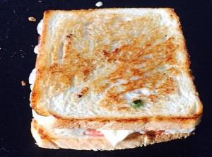 IMG_3620-300x222 Vegetable Cheese Sandwich