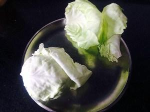 IMG_4374-300x225 Crispy Cabbage Strips/Cabbage Pakora