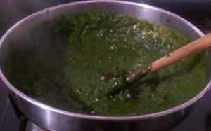 DGSS8989-300x187 Mustard Leaf Gravy with Indian Corn Flat Bread/Makki Ki Roti and Sarson ka Saag