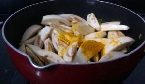 MYYG9721-300x174 Spicy Egg Plant Dry Dish/Baingan Fry/Kathirikai Vadhakkal