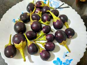 LWVY8803-300x225 Stuffed Andhra Style Brinjal (Eggplant) Curry/ Gutti Vankaya Kura