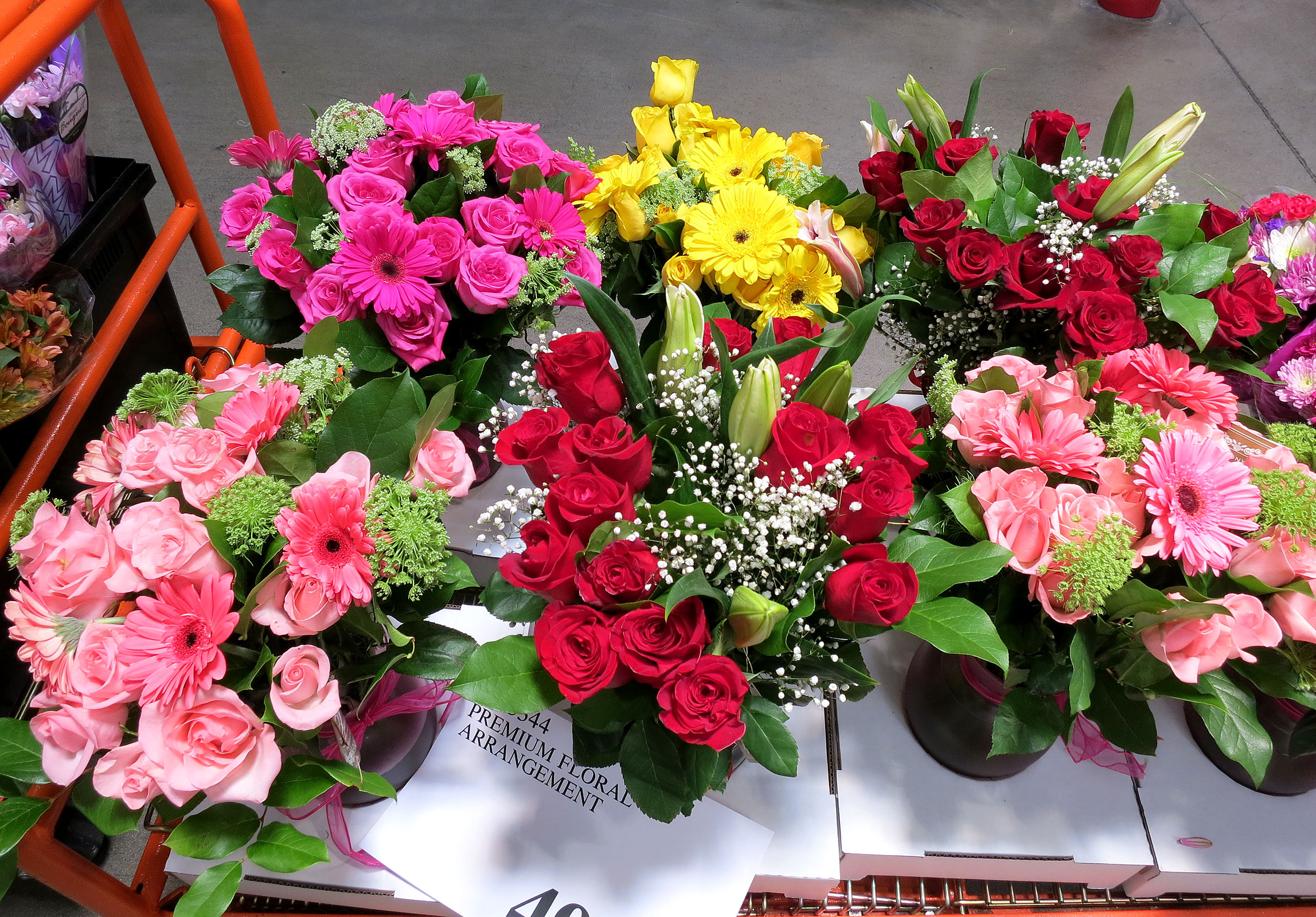 Costco plants and flowers best plants 2017 mother u0027s day flowers u2013 tasty island izmirmasajfo Images