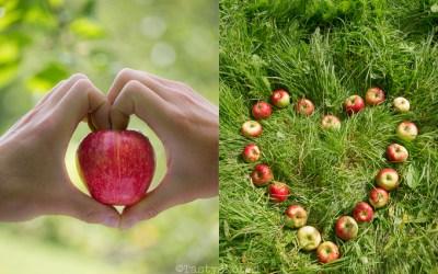 Gevulde appeltjes uit de oven