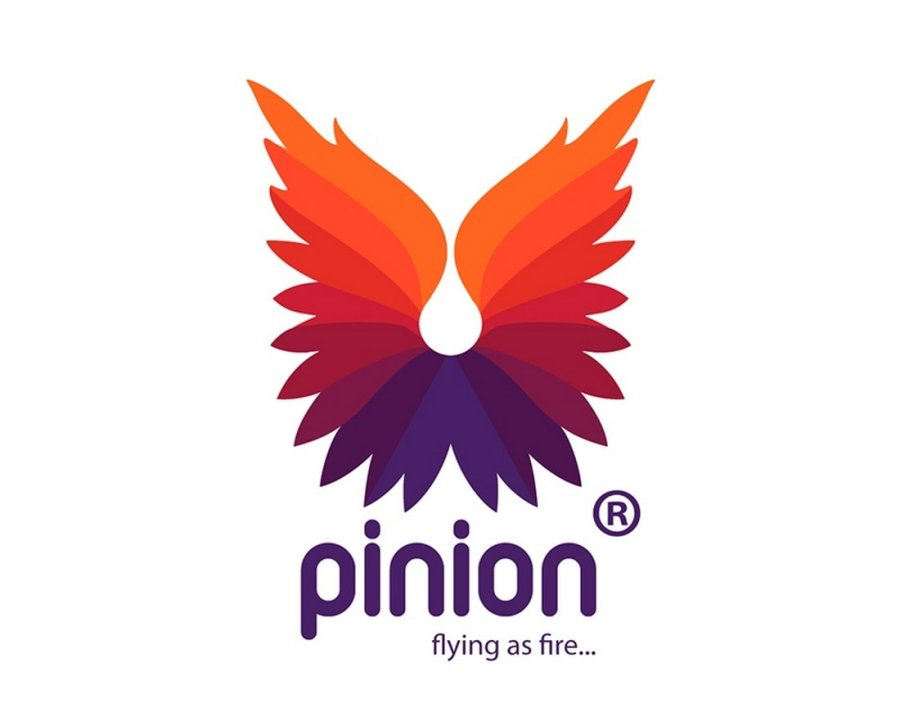 Pinion Fire - Free Colorful Logo Template