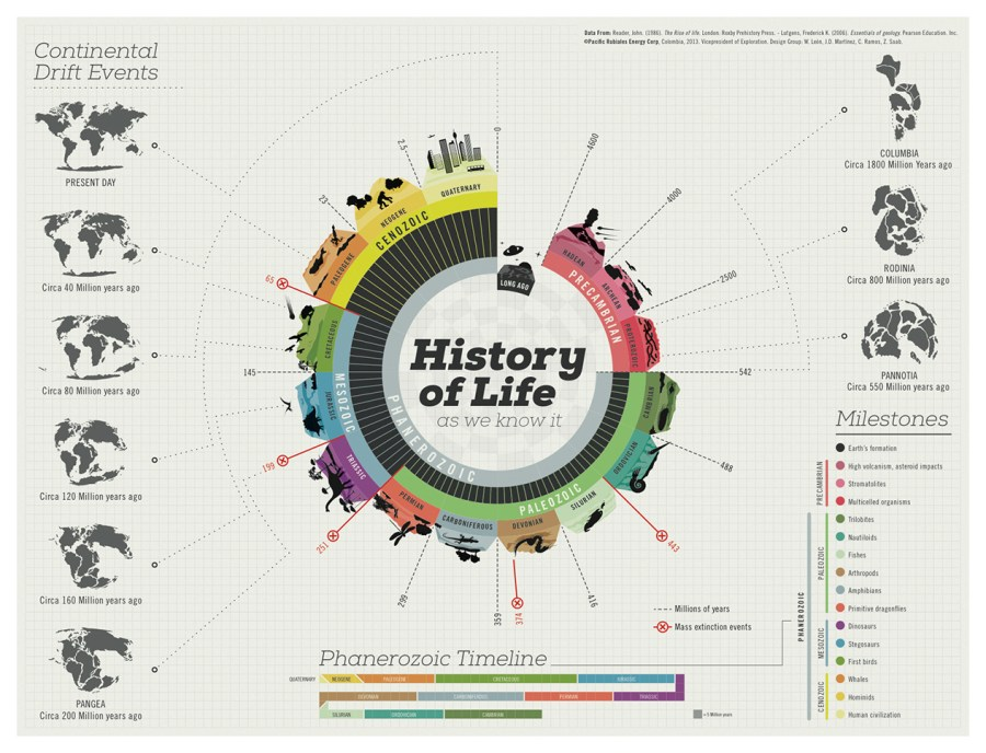 The best infographics: History of Life