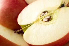 Apple Seed Cyanide