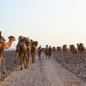 Itinerario 21 días Etiopía