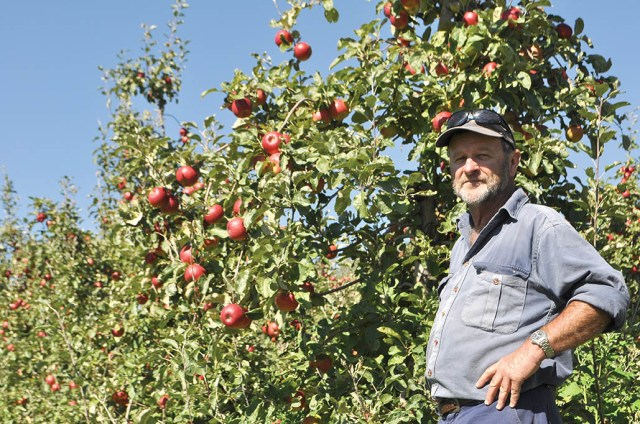 Batlow apple grower Greg Mouat is challenging Woolworths and Coles to utilise Australian growth produce.