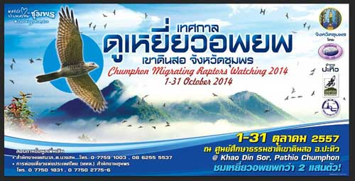 Chumphon-Migrating-Raptors-Watching-2014_1