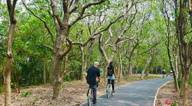 Inner-city eco-tourism - Bang Krachao and Lat Pho Canal - Botanical Bike Path in Bang Krachao