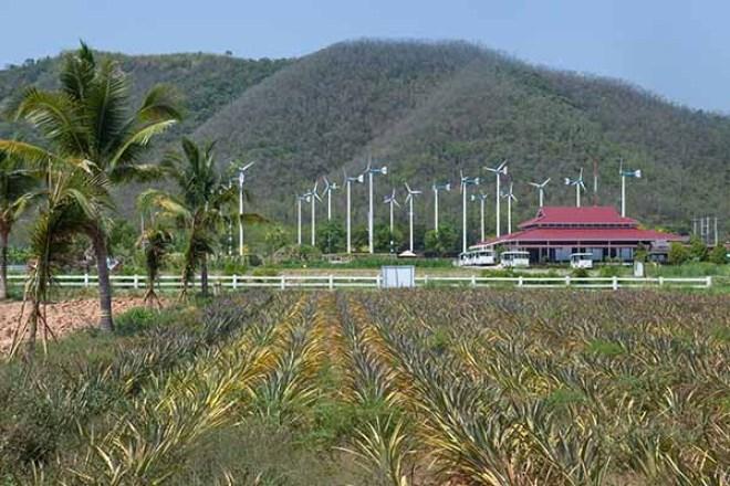 Chang Hua Man Royal Projects