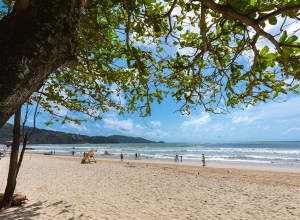 Phuket launches ground breaking No Foam No Plastic initiative