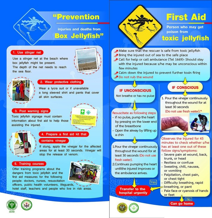 Jellyfish warning: First Aid treatment for jellyfish stings
