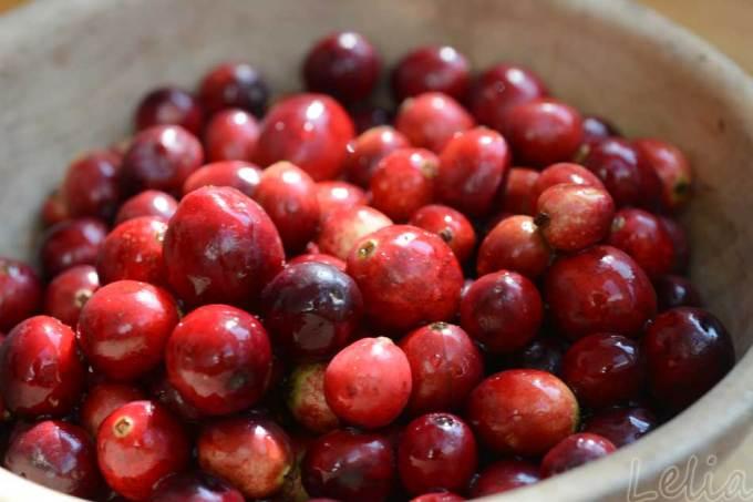 Apfelmus mit Cranberriehaube