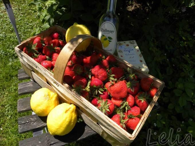 Erdbeer-Buttermilch Terrine