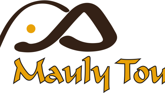 MAULY TOURS & SAFARIS