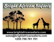 Bright African Safaris