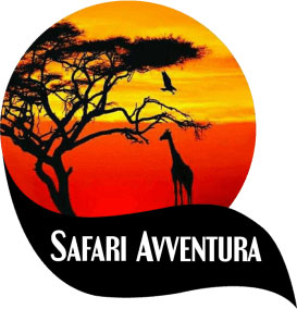 SAFARI AVVENTURA (T) LTD