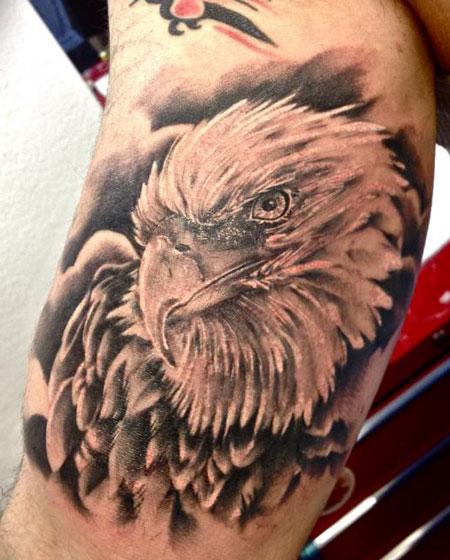 Tatuaje Brazo Realista águila Por Tattoo Nero