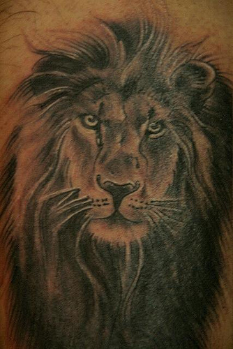 Small Lion Head Tattoo Designs