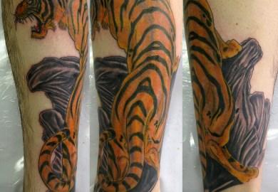 Tiger Stripe Tattoo Designs