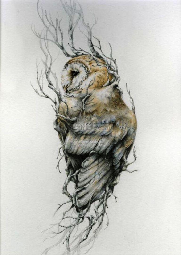 TattooMix Dövmecim baykuş owl dövmeleri (12)