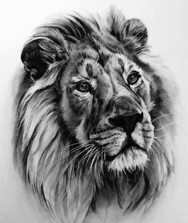 tattoo mix dövmecim aslan dövmeleri (5)