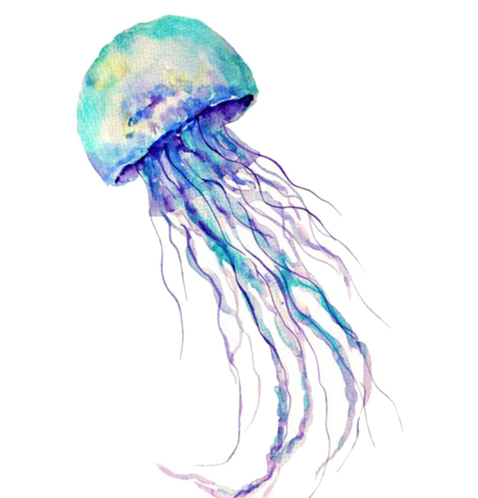 Watercolor Jellyfish Temporary Tattoo Tattoos For Fun