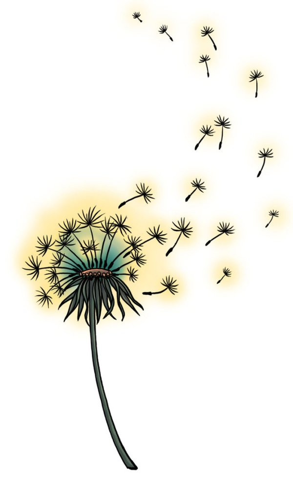 dandelion tattoos design ideas