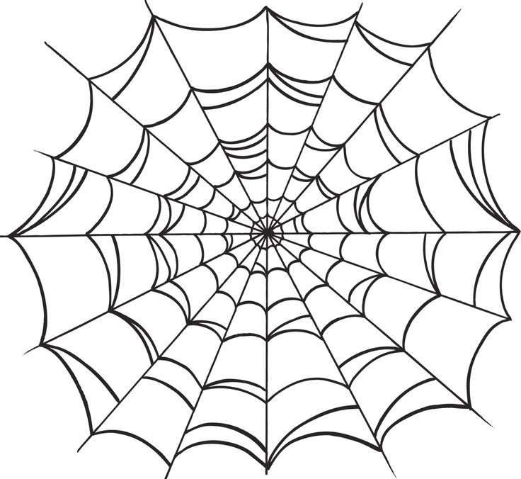 Traditional Spider Web Tattoo Design