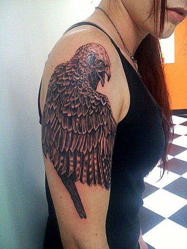 Falcon Tattoos Designs Ideas and Meaning  Tattoos For You