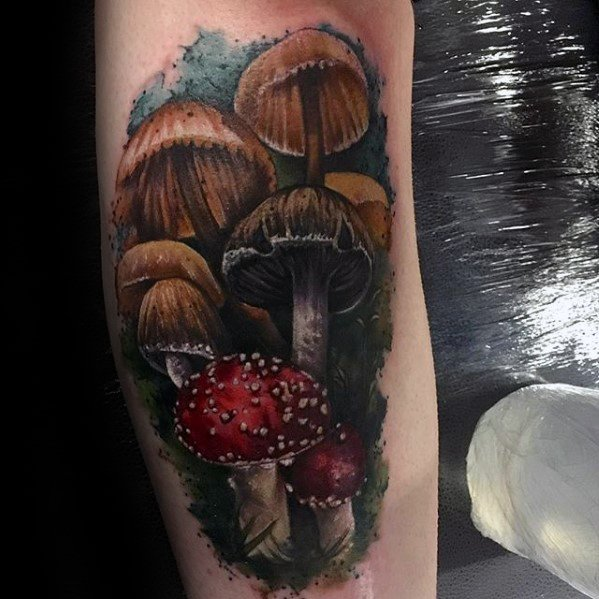 Mushroom Tattoos Designs Ideas and Meaning  Tattoos For You