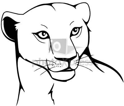 Outstanding Lion Tattoo Outline