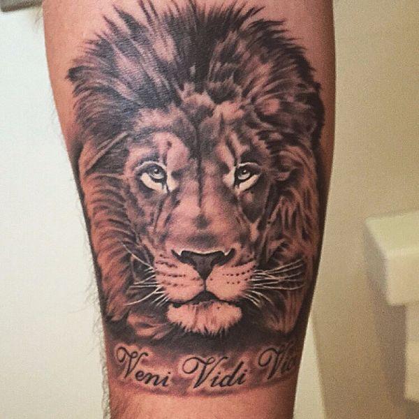Photorealistic veni vidi vici lion tattoo