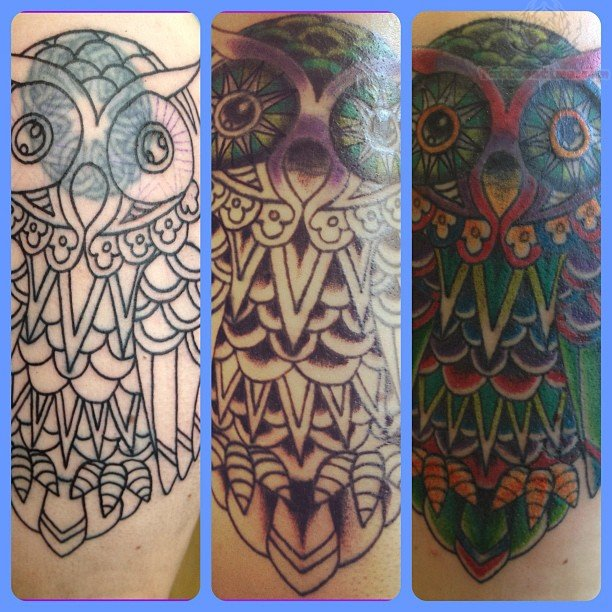 Colorful Owl Tattoo Designs