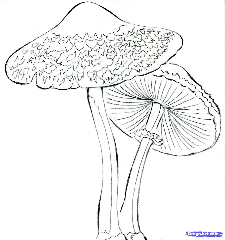 Mushroom Tattoo Images & Designs