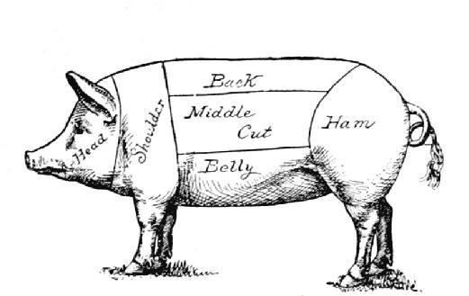pork butcher cuts diagram wiring for kohler generator pig body parts tattoo design
