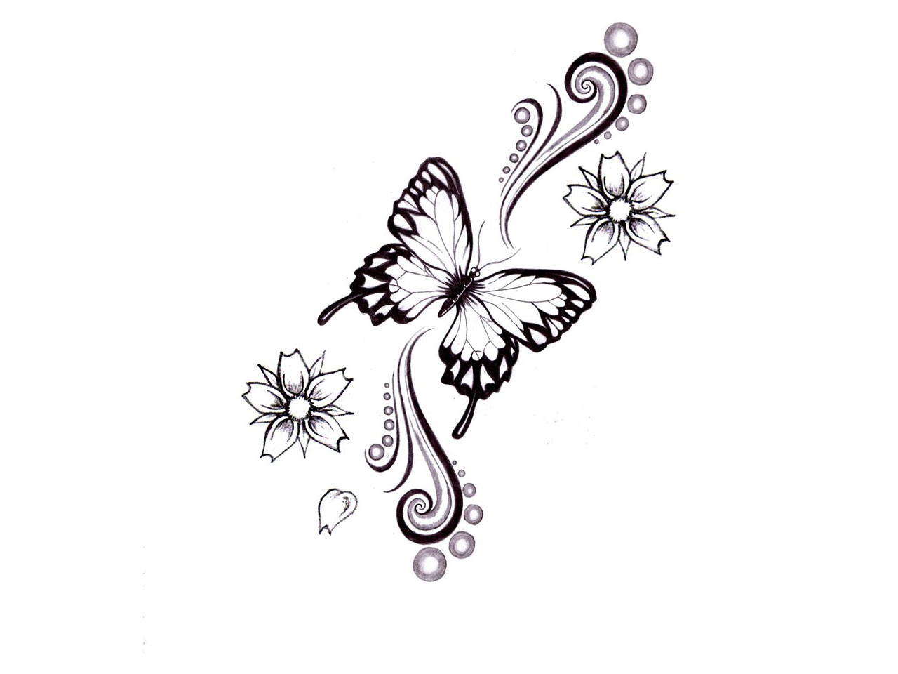 Butterfly Tattoos Page 51