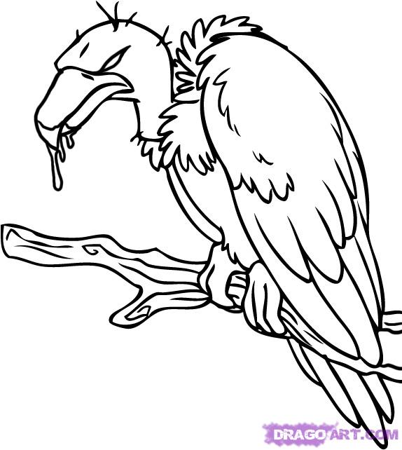 Vulture Tattoo Images & Designs