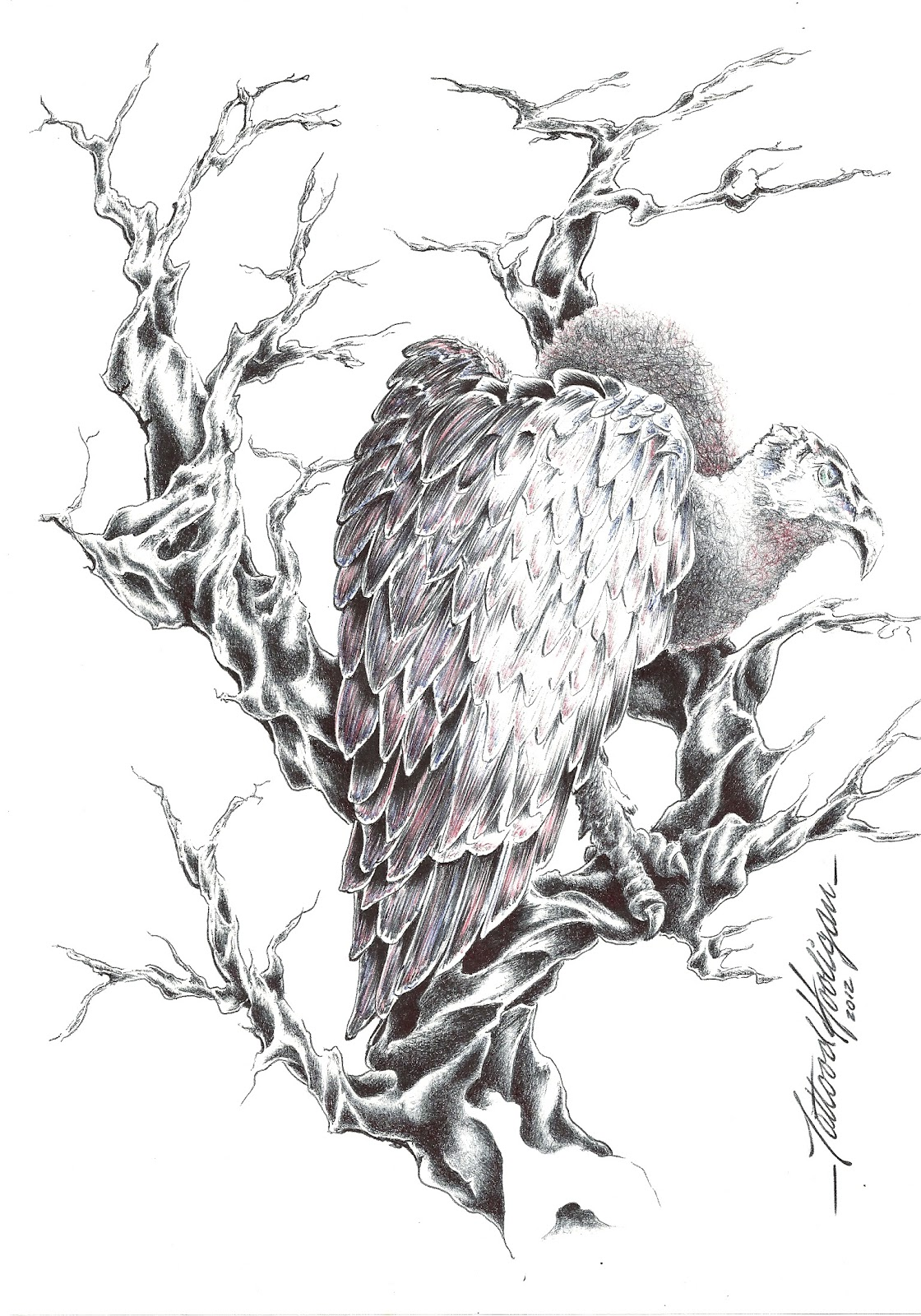 Vulture Tattoo Meaning