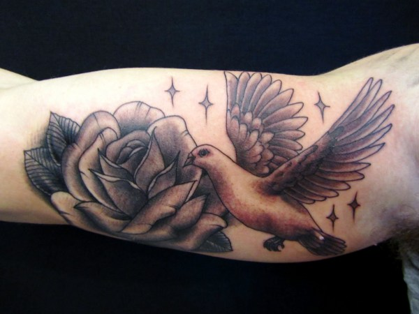 20 Dove Arm Tattoos Pictures And Ideas On Meta Networks