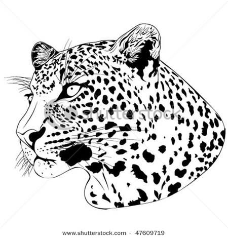 Leopard Tattoos : Page 2