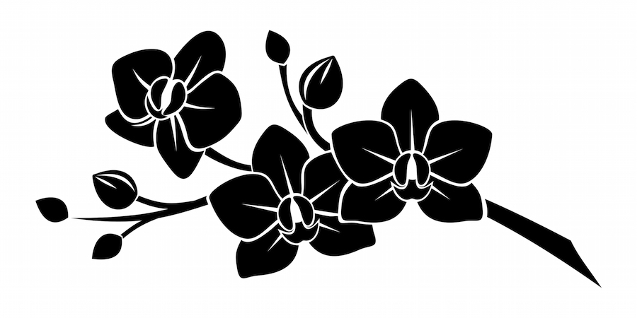 It is a flower that represents the metaphysical striving for the impossible and infinite. Orchid Tattoo Meaning - Tattoos With Meaning
