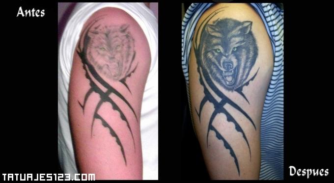 Tatuaje De Un Lobo En El Brazo Tatuajes 123