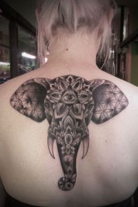 Elefante hindú, Flores, Ojo