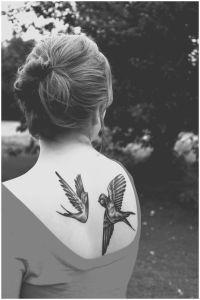 Aves Golondrinas