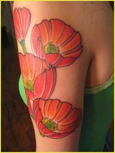 Flor de Amapola